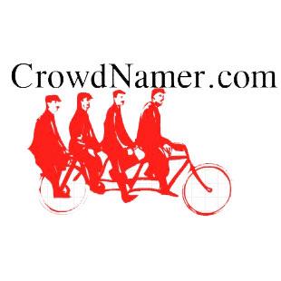 Crowd Namer