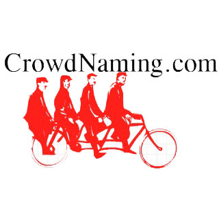 crowdNaming.jpg
