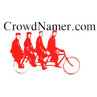 Crowd Namer